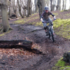 Epping Forest MTB