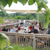 Lee Valley Park Farms, Orchard Cafe