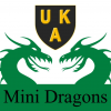 UKA Karate – Buckhurst Hill Mini Dragons