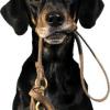 Dog Walking Loughton WALKY WALKIES